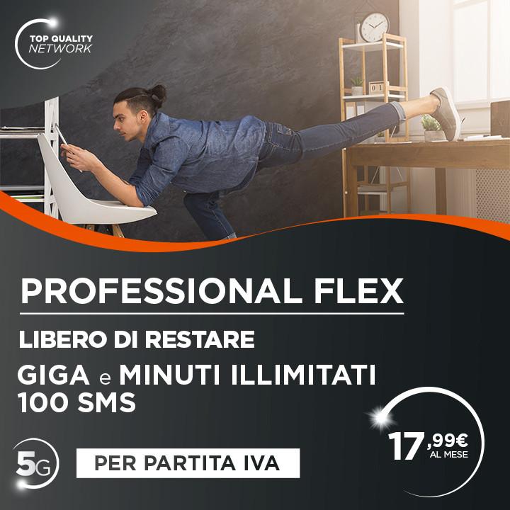 Post Social Professional Flex GMB.jpg